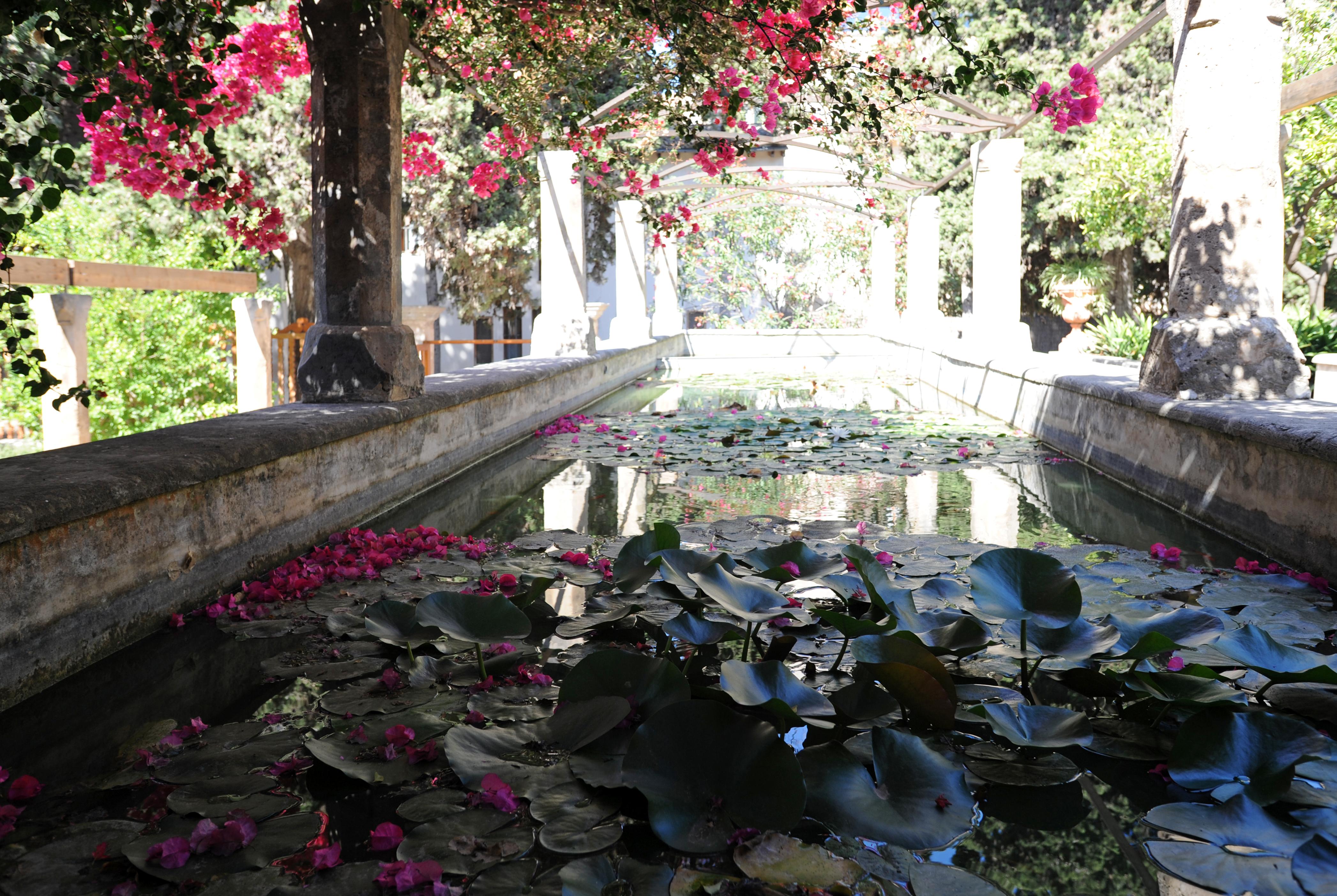 The old city of palma de mallorca the neighborhood of for Athos palma jardin