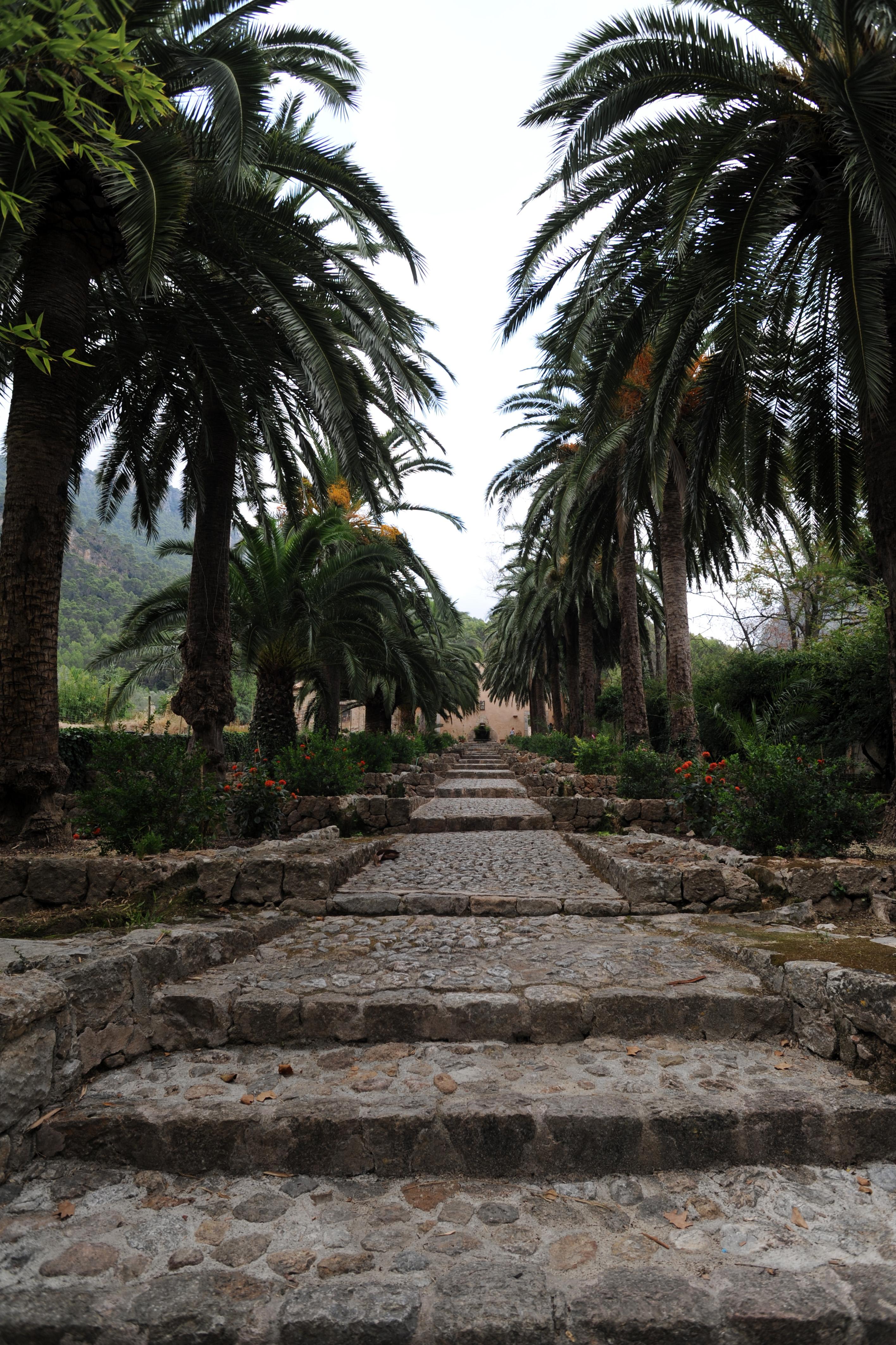 La ciudad de bunyola en mallorca jardines de alf bia for Jardines alfabia