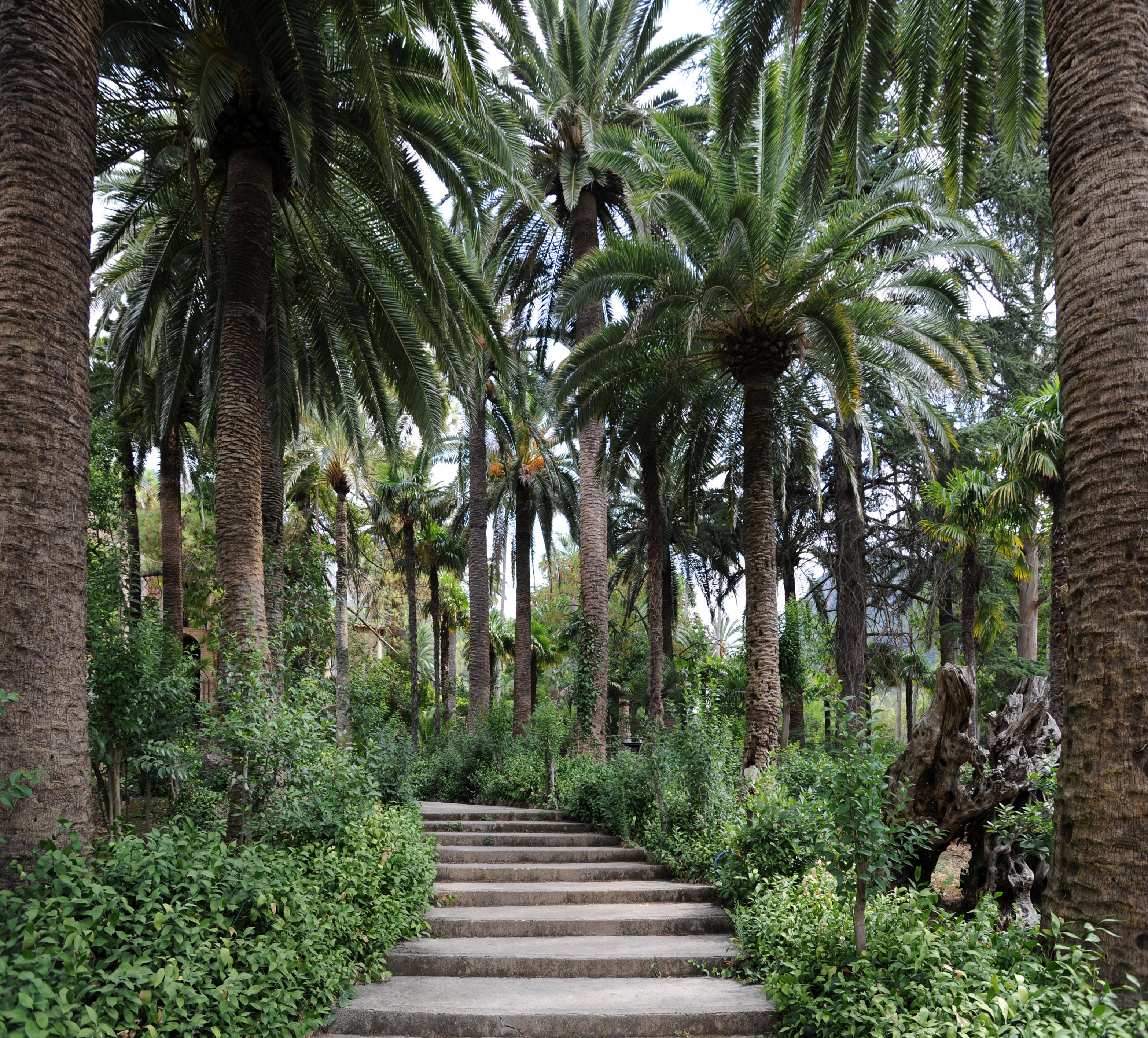 la ville de bunyola majorque les jardins d 39 alf bia. Black Bedroom Furniture Sets. Home Design Ideas