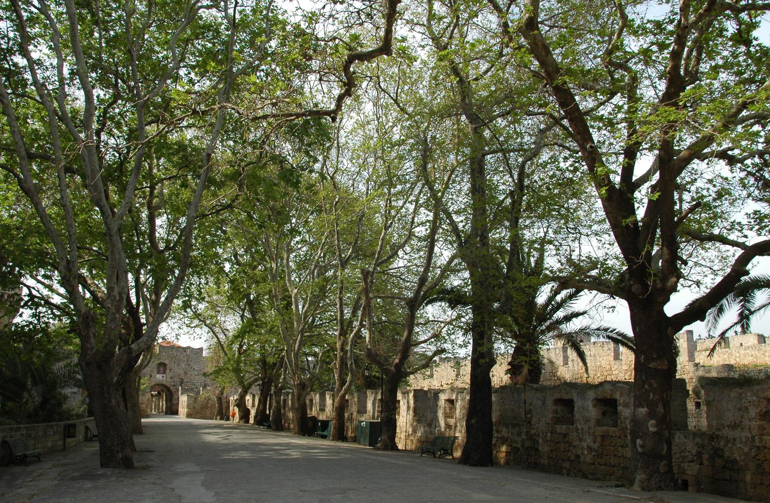 Das tor von amboise rhodos for Porte saint antoine