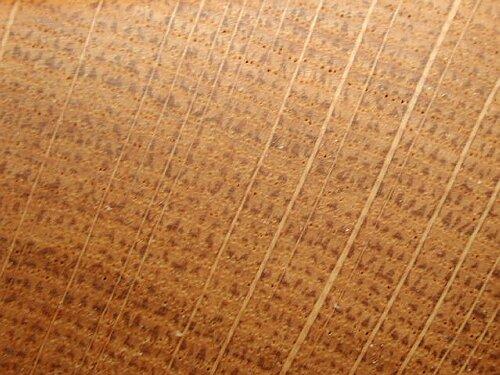 Chene Bois Dur Ou Tendre : Ch?ne sessile. Bois coupe radiale. Cliquer pour agrandir l'image.