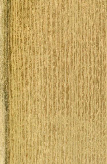 Une belle brune bien poilue baisee par 2 gars - 3 part 8
