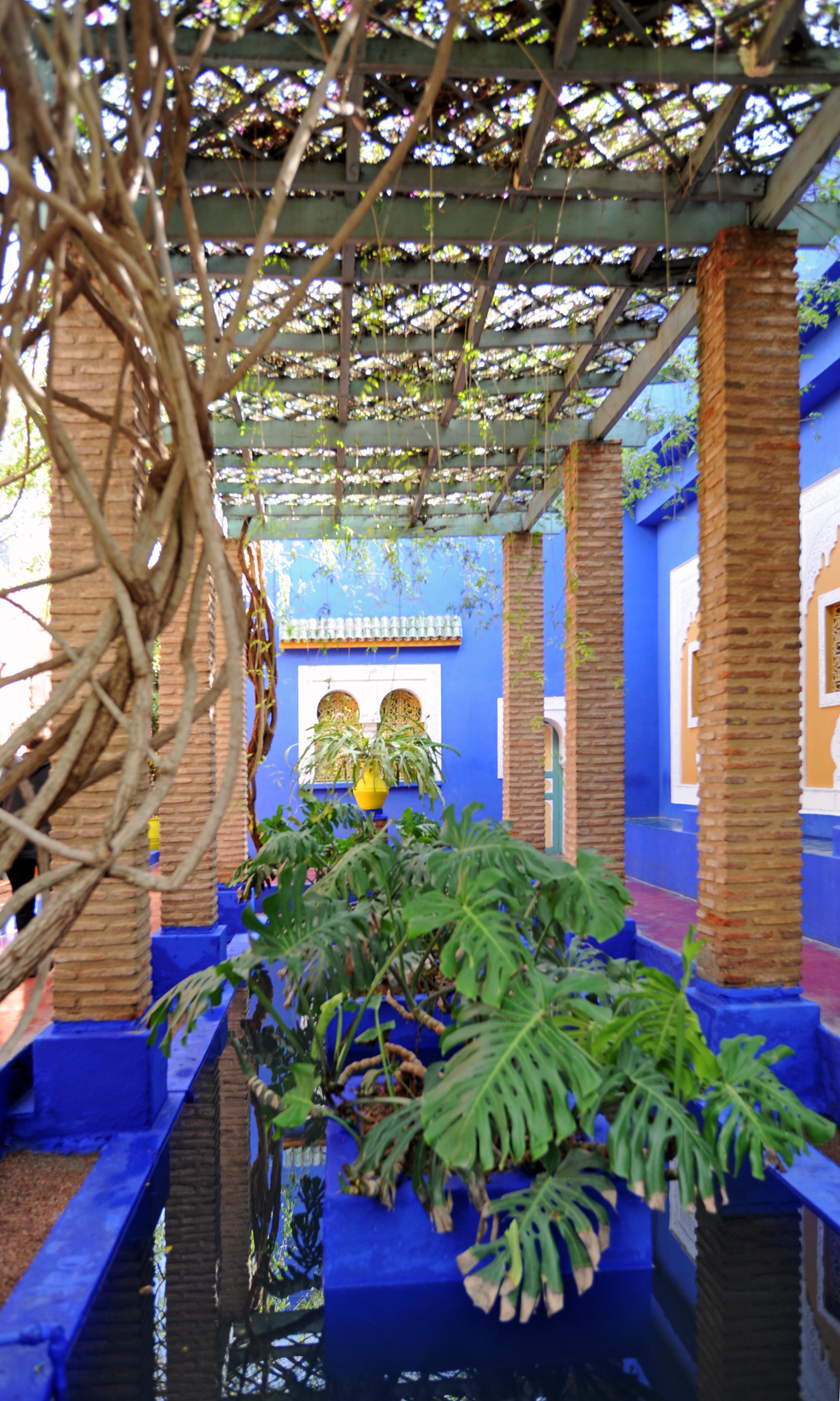 Le Jardin Majorelle A Marrakech Au Maroc